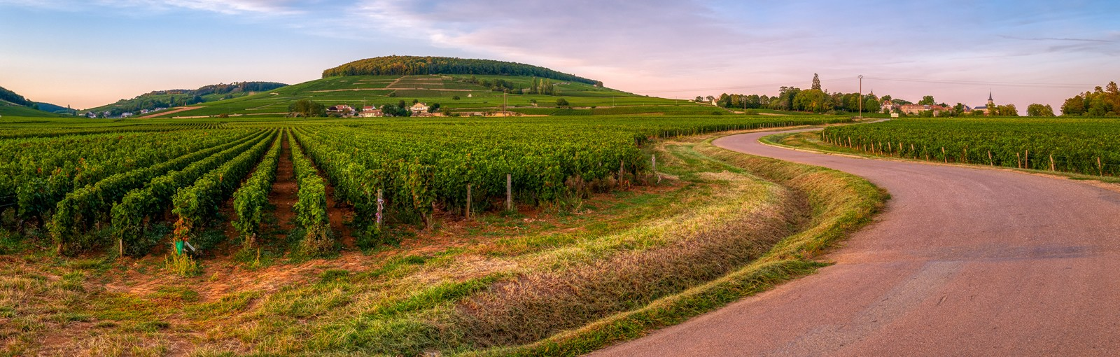 Tours 3 Nights in Burgundy: Sensations, Exploration, Castles and Wines! - Burgundy - Multiday tours from Paris