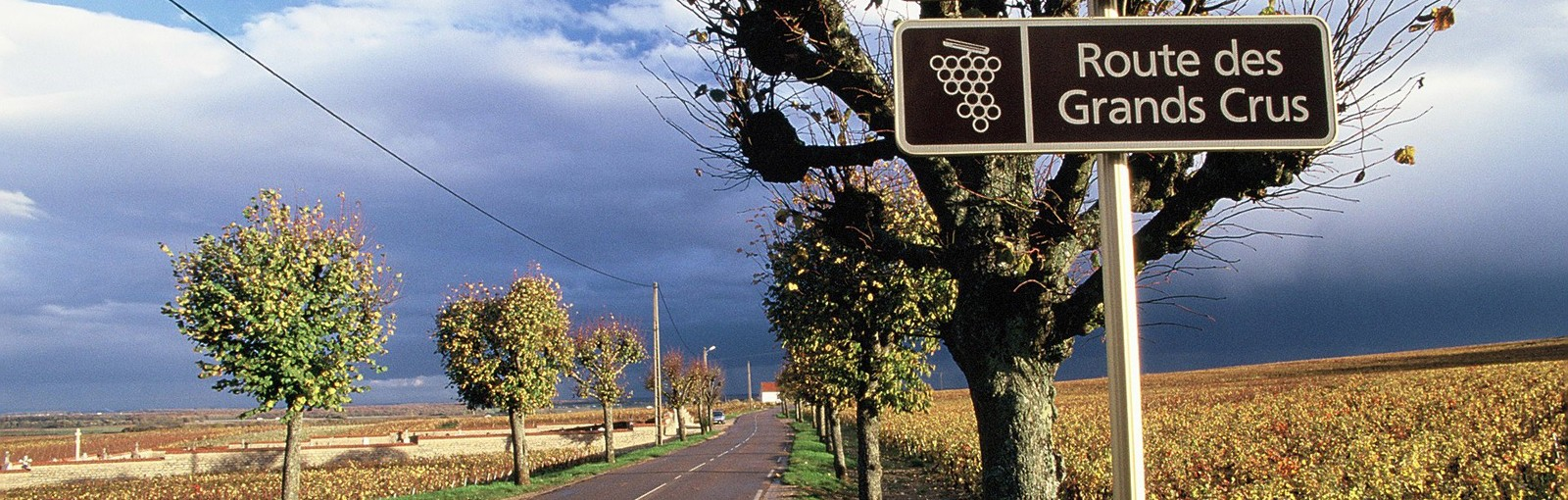 Tours Burgundy - Full days - Day tours from Paris