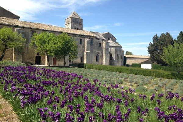 Two days in Provence - Multi-regional - Multiday tours from Paris