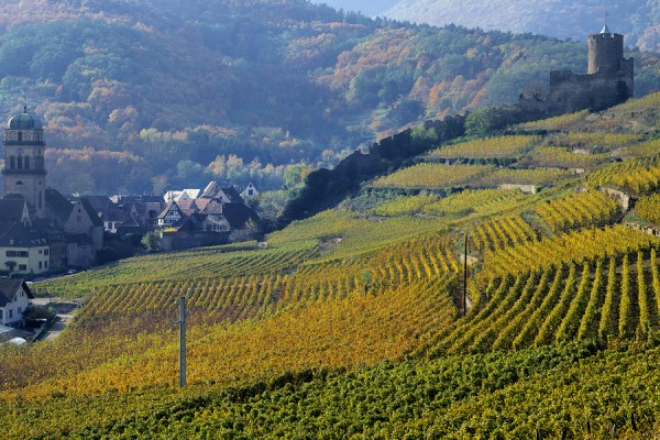 Overnight tour in Alsace - Alsace - Regional tours