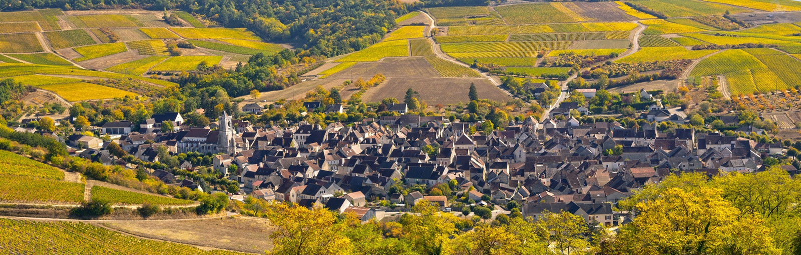 Tours 2 days in Burgundy: Tour of the Yonne and Côtes de Beaune Wine Route - Burgundy - Multiday tours from Paris