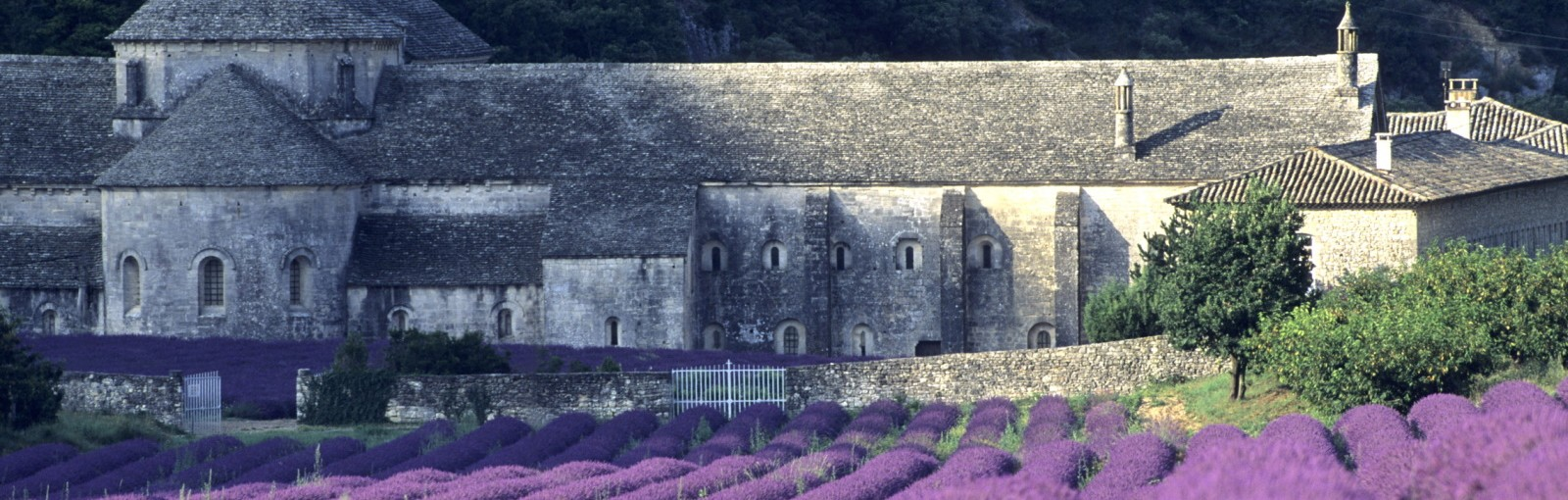 Tours Two days in Provence - Multi-regional - Multiday tours from Paris