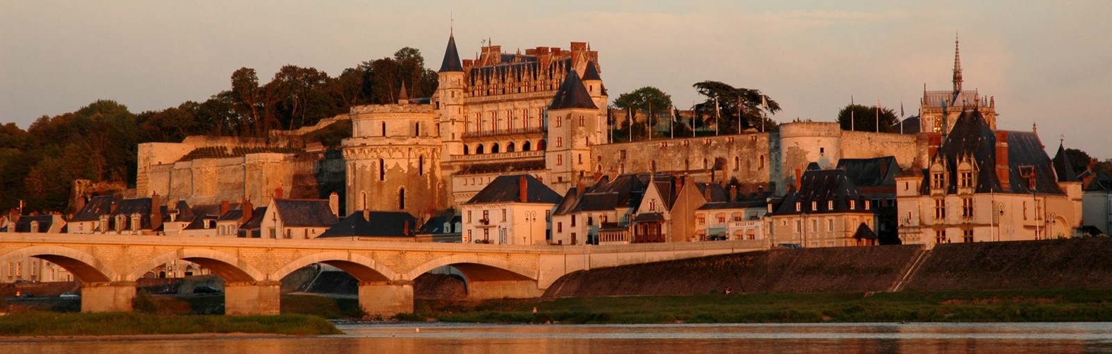Tours LEONARDO DA VINCI AND WINES FROM AMBOISE - Full days - Day tours from Paris