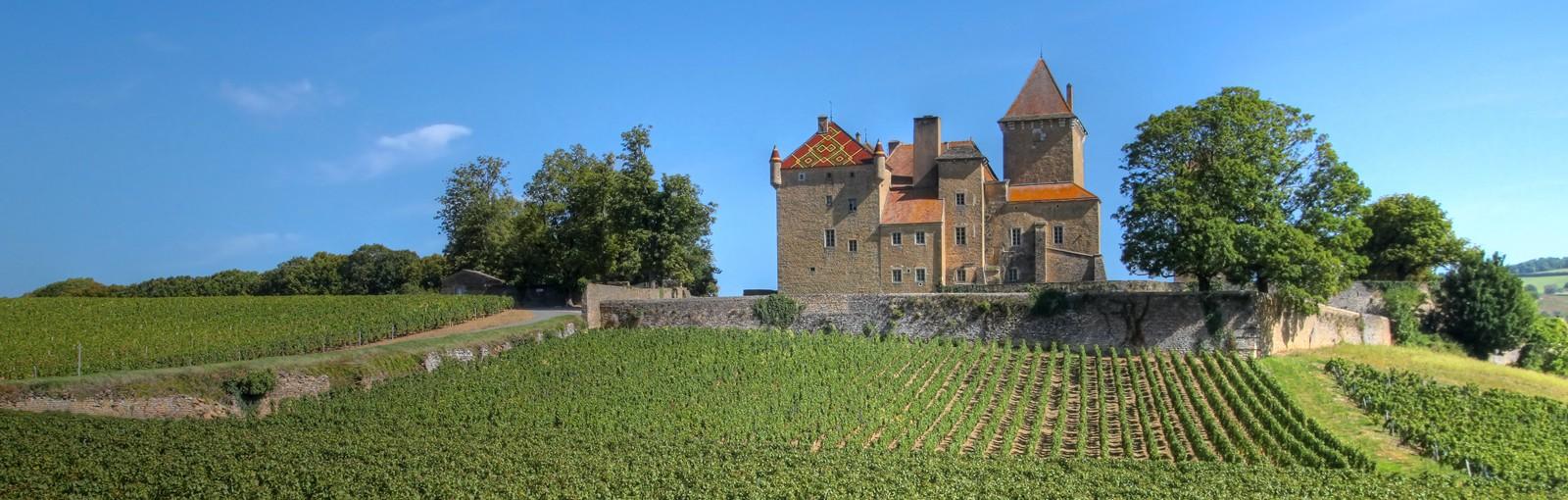 Château privé recevant des hôtes